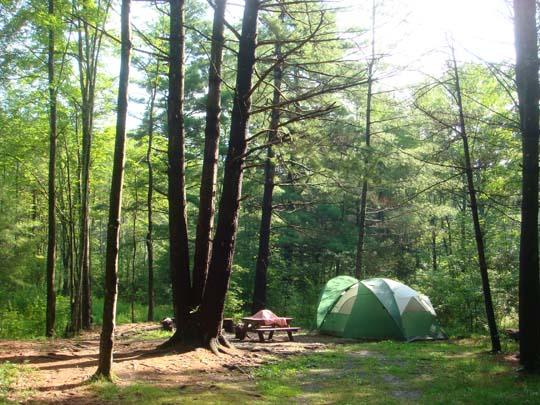 Y-camp-3