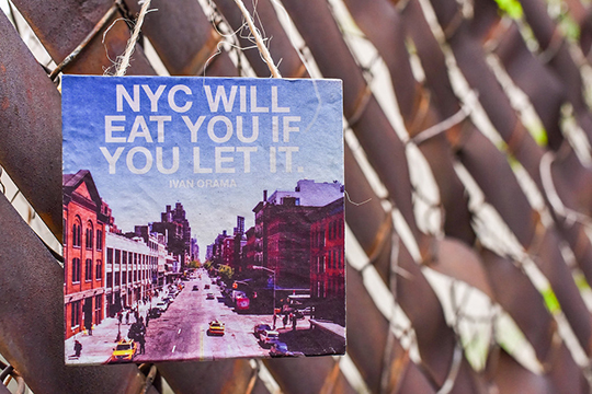 nyc will eat you alive